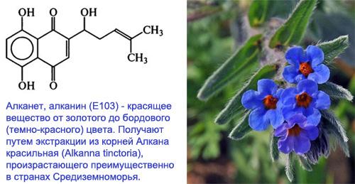 E103 Алканет, алканин - действие на здоровье, польза и вред, описание.