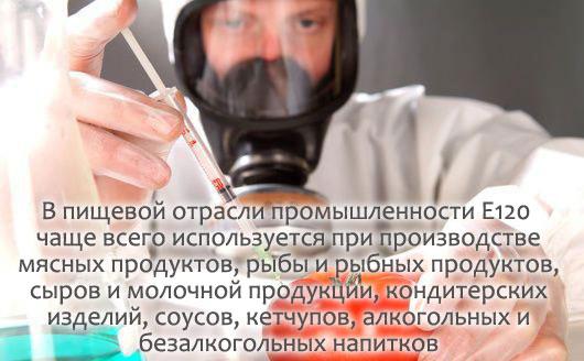 E120 Кошениль, карминовая кислота, кармин - действие на здоровье, польза и вред, описание.
