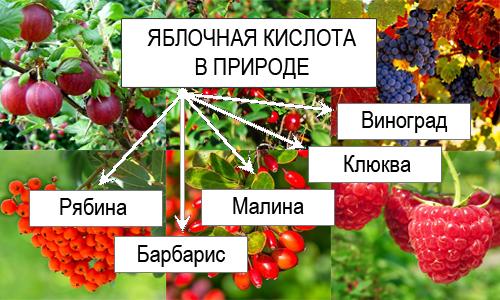 E296 Яблочная кислота - действие на здоровье, польза и вред, описание.