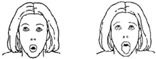 Лев (проработка мышц подбородка, шеи, окологлазная область лица, носогубные складки)