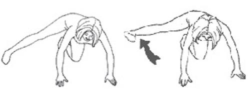 Сейко (проработка ягодичных и бедренных мышц)