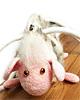 Где встретить Новый год Козы (Овцы)?