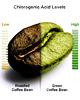 Похудеть с помощью зелёного кофе