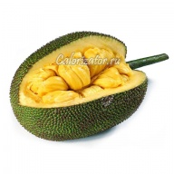 Джекфрут (плод хлебного дерева)