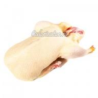 Индоутка (мускусная утка)