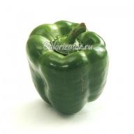 Перец сладкий зелёный