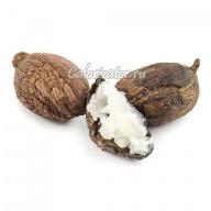 Плоды дерева ши (карите)