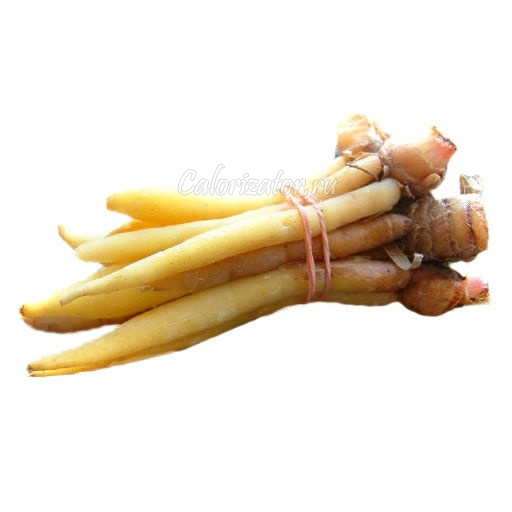 Имбирь китайский (крачай) - калорийность, полезные свойства, польза и вред, описание.