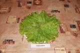 Шаг 7. На блюдо выложить листья салата, сверху выложить салат горкой.