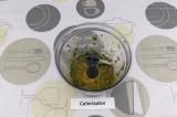 Шаг 5. Масло, зелень, специи и лимонный сок смешать в блендере.