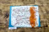 Шаг 6. С краю выложить морковку по-корейски.