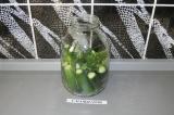 Шаг 4. Выложить листья и зелень на огурцы.