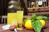 Готовое блюдо: лимонный ликер по-итальянски
