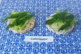 Шаг 3. Сверху хрустящего салата выложить веточки зеленого укропа.