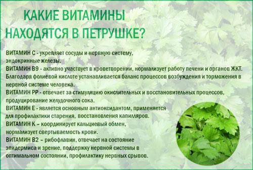 Петрушка - калорийность, полезные свойства, польза и вред, описание.